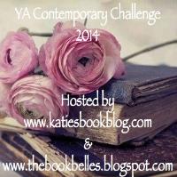 YA contemporary challenge image